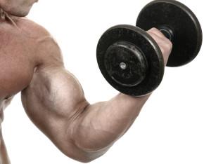 muscle-gaining-secrets-reviews